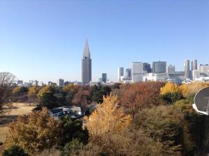 201312新宿御苑1