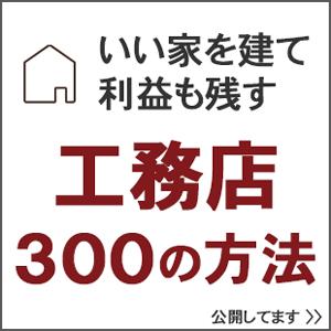 iiie300